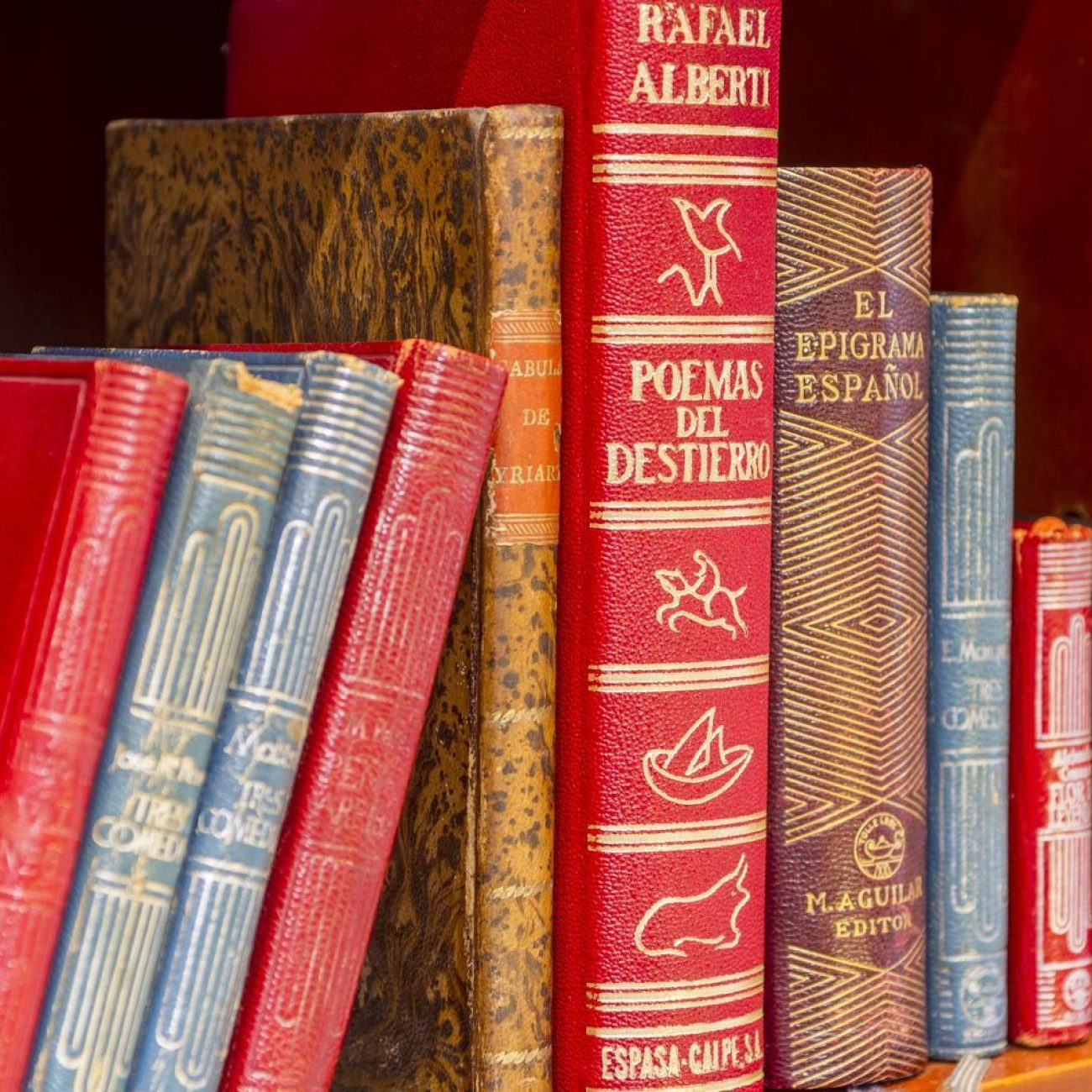 3548-libreria-anticuaria-astarloa-03
