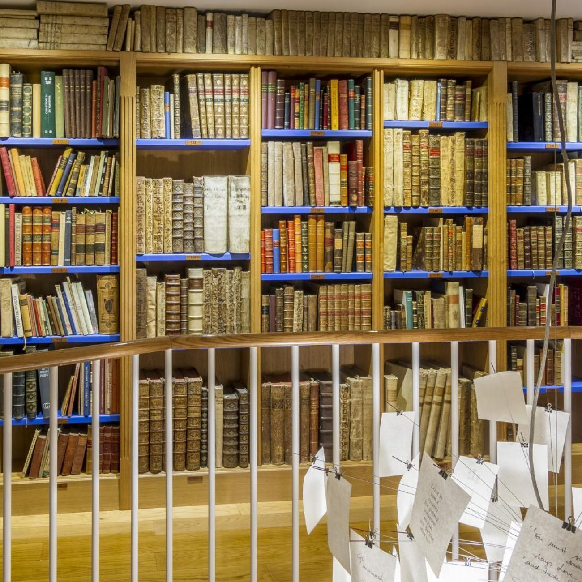 3548-libreria-anticuaria-astarloa-04
